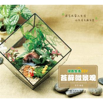 绿色生活DIY:苔藓微景观