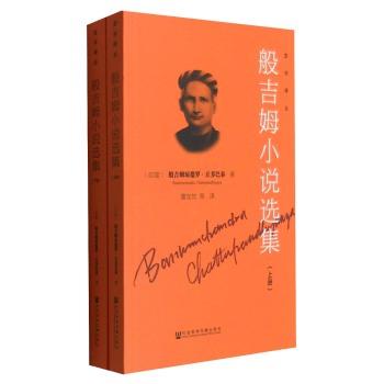 亚非译丛 般吉姆小说选集(全2册)