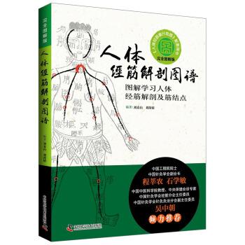 人体经筋解剖图谱:图解学习人体经筋解剖及筋结点(精装)