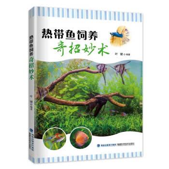 热带鱼饲养奇招妙术