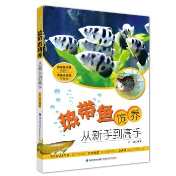热带鱼饲养  从新手到高手