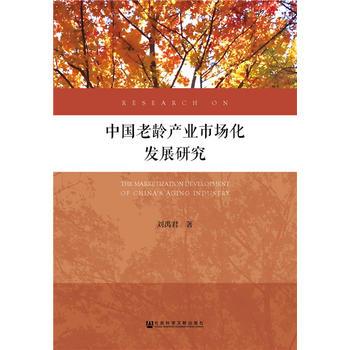 中国老龄产业市场化发展研究
