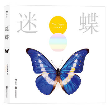 迷蝶:赏自然之大美,探生命之秘境
