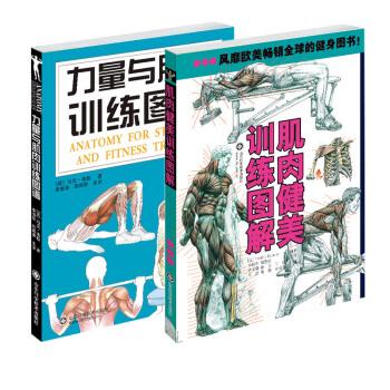 肌肉健美训练(套装共2册)