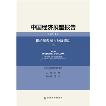 中国经济展望报告(2017)