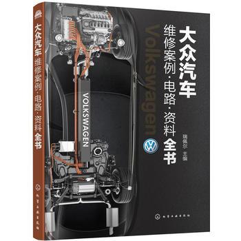 大众汽车维修案例·电路·资料全书