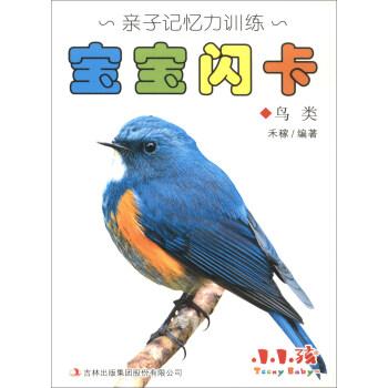 宝宝闪卡(鸟类)/亲子记忆力训练