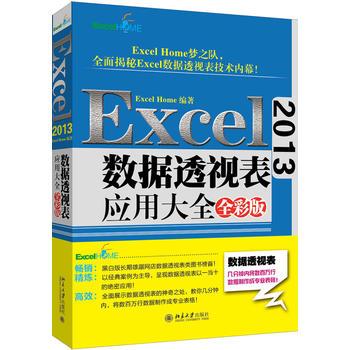 Excel 2013数据透视表应用大全(全彩版)