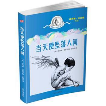 国际安徒生奖儿童小说:当天使坠落人间
