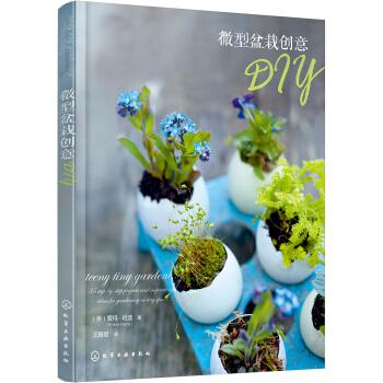微型盆栽创意DIY