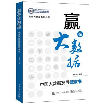 赢在大数据:中国大数据发展蓝皮书