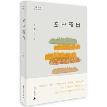 中国当代原创文学  空中稻田