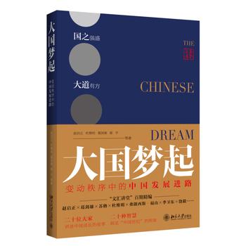 大国梦起:变动秩序中的中国发展进路