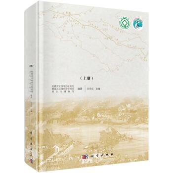 柳孜运河遗址第二次考古发掘报告