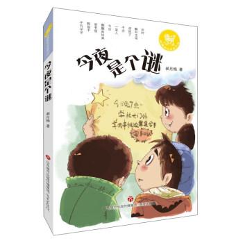 麒麟新经典童书馆 今夜是个谜/麒麟新经典童书馆