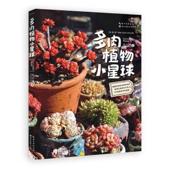 都市园艺家·多肉植物小星球