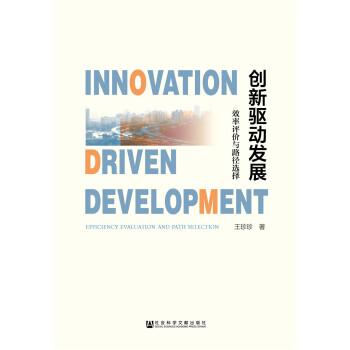创新驱动发展:效率评价与路径选择