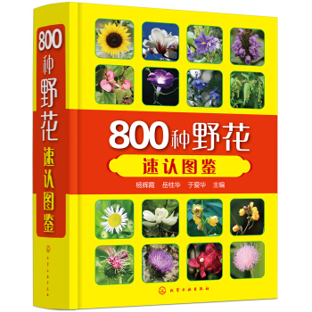 800种野花速认图鉴(精装)