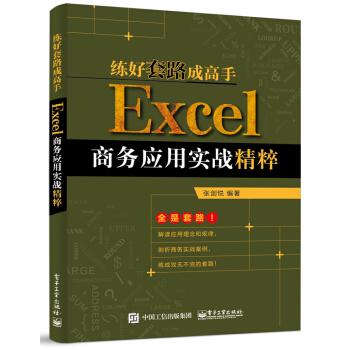 练好套路成高手:Excel商务应用实战精粹