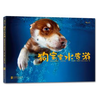 狗宝宝水底游