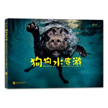 狗狗水底游