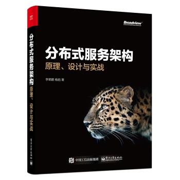 分布式服务架构:原理、设计与实战