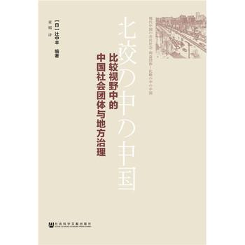 比较视野中的中国社会团体与地方治理