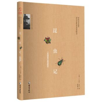"""""""慢读""""系列:昆虫记(插图典藏版)"""