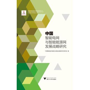 中国智能电网与智能能源网发展战略研究