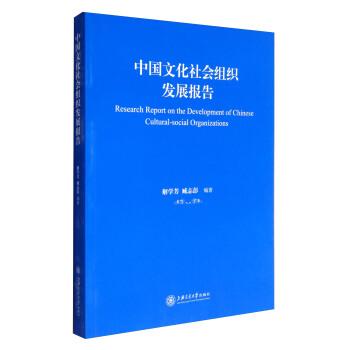 中国文化社会组织发展研究报告