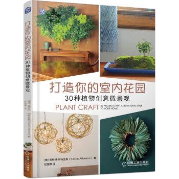 打造你的室内花园:30种植物创意微景观