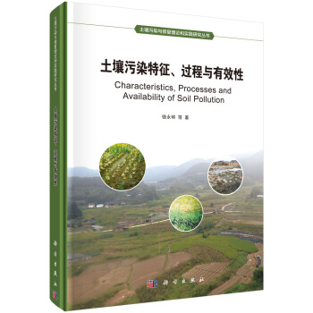 土壤污染特征、过程与有效性