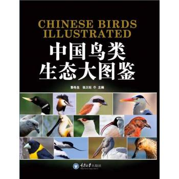 中国鸟类生态大图鉴(精装)