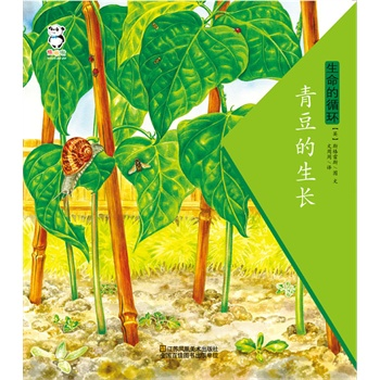 生命的循环·青豆的生长