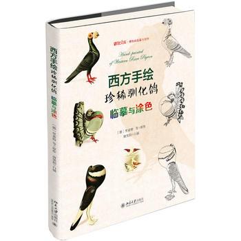 西方手绘珍稀驯化鸽:临摹与涂色