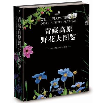 青藏高原野花大图鉴(精装)
