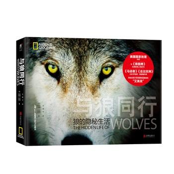 与狼同行:狼的隐秘生活(精装)