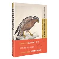 喜马拉雅山珍稀鸟类图鉴
