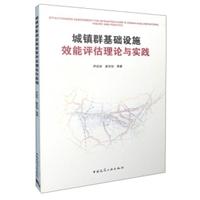 城镇群基础设施效能评估理论与实践