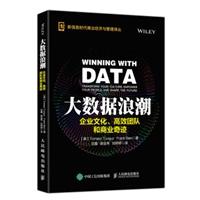 大数据浪潮:企业文化、高效团队和商业奇迹