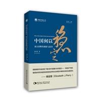 中国何以稳定:来自田野的观察与思考(理解中国丛书)