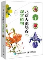 北京天池峡谷观赏植物