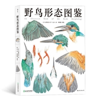 野鸟形态图鉴(精装)