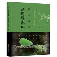 昆虫之美:勐海寻虫记
