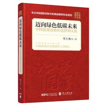 迈向绿色低碳未来(中文平装)/中国能源战略的选择和实践