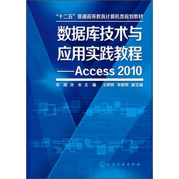数据库技术与应用实践教程 Access2010