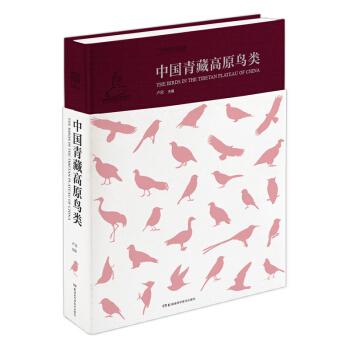 中国青藏高原鸟类