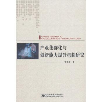 产业集群化与创新能力提升机制研究/黄西川