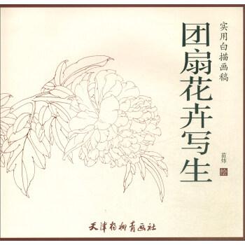 团扇花卉写生
