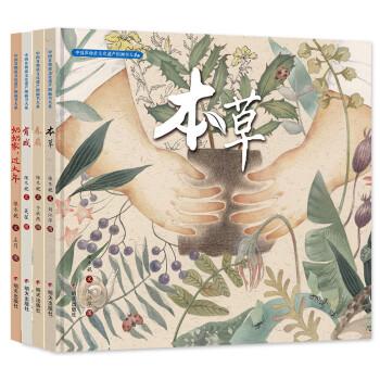 中国非物质文化遗产图书大系(4册套装)